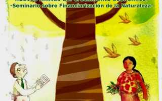 "Seminario de análisis ""De Naturaleza a capital natural"", la Financiarización de la Naturaleza"
